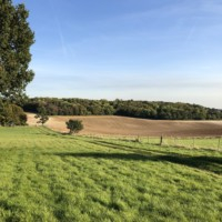 Autumn Approaches at Lockley Farm